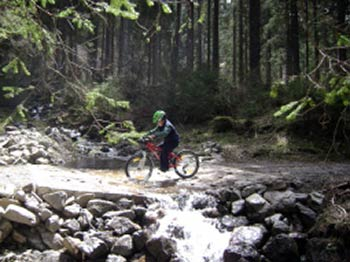 MOUNTAIN BIKE E BICICLETTA PER TUTTI